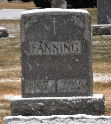 FANNING, JAMES H - Suffolk County, New York | JAMES H FANNING - New York Gravestone Photos