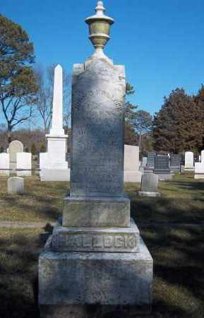 HALLOCK, WILLIE - Suffolk County, New York | WILLIE HALLOCK - New York Gravestone Photos