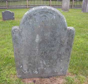 HEDGES, METHITABLE - Suffolk County, New York   METHITABLE HEDGES - New York Gravestone Photos