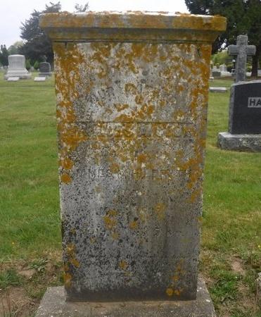 COOK, FRANCES - Suffolk County, New York | FRANCES COOK - New York Gravestone Photos