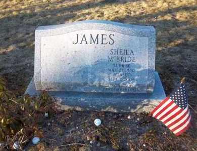 MCBRIDE, SHEILA - Suffolk County, New York | SHEILA MCBRIDE - New York Gravestone Photos