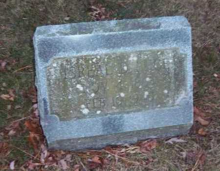 LUCE, ISREAL D. - Suffolk County, New York | ISREAL D. LUCE - New York Gravestone Photos