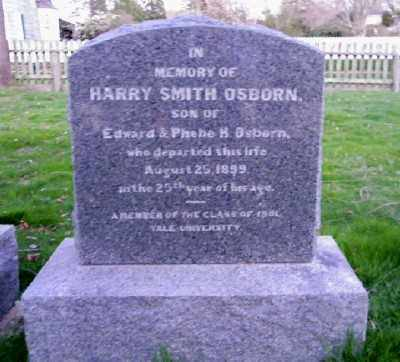 OSBORN, HARRY SMITH - Suffolk County, New York | HARRY SMITH OSBORN - New York Gravestone Photos