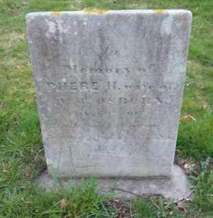 OSBORN, PHEBE - Suffolk County, New York | PHEBE OSBORN - New York Gravestone Photos