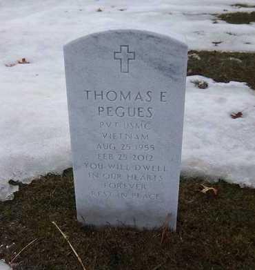PEGUES (VN), THOMAS E - Suffolk County, New York | THOMAS E PEGUES (VN) - New York Gravestone Photos