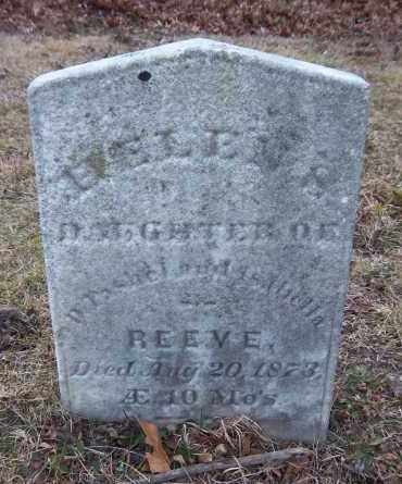 REEVE, EVELEN - Suffolk County, New York | EVELEN REEVE - New York Gravestone Photos