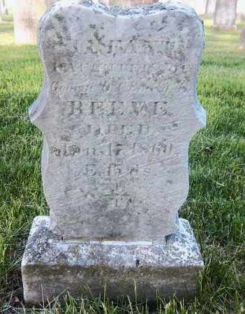 REEVE, INFANT DAUGHTER - Suffolk County, New York | INFANT DAUGHTER REEVE - New York Gravestone Photos