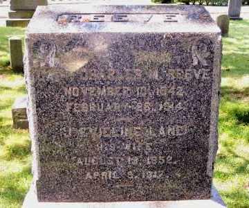 REEVE, J EVIELINE - Suffolk County, New York | J EVIELINE REEVE - New York Gravestone Photos