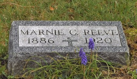 REEVE, MARNIE C - Suffolk County, New York | MARNIE C REEVE - New York Gravestone Photos