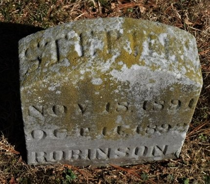 ROBINSON, STEPHEN - Suffolk County, New York | STEPHEN ROBINSON - New York Gravestone Photos