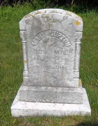 SAYRE, MARY - Suffolk County, New York   MARY SAYRE - New York Gravestone Photos