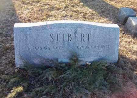 SEIBERT, ORMOND DEFOREST - Suffolk County, New York | ORMOND DEFOREST SEIBERT - New York Gravestone Photos