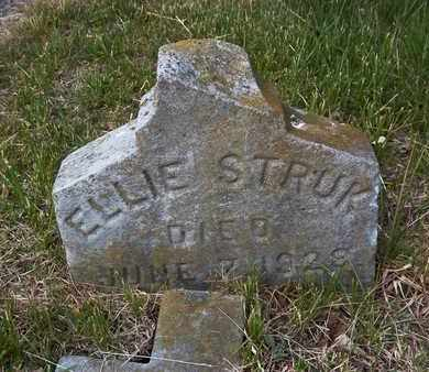 STRUK, ELLIE - Suffolk County, New York | ELLIE STRUK - New York Gravestone Photos
