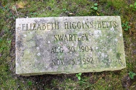 SWARTLEY, ELIZABETH HIGGINS - Suffolk County, New York | ELIZABETH HIGGINS SWARTLEY - New York Gravestone Photos