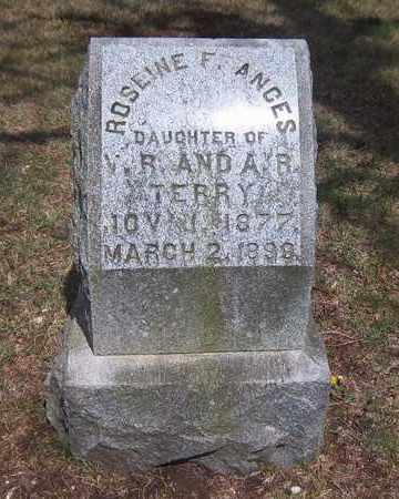 TERRY, ROSEINE FRANCES - Suffolk County, New York | ROSEINE FRANCES TERRY - New York Gravestone Photos