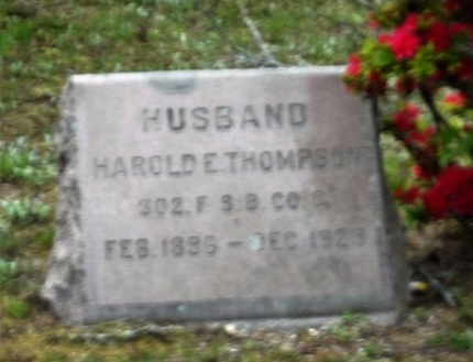 THOMPSON, HAROLD E - Suffolk County, New York | HAROLD E THOMPSON - New York Gravestone Photos