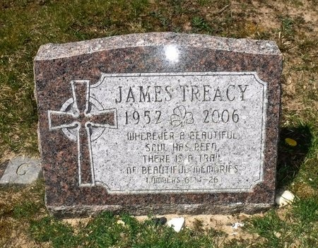 TREACY, JAMES - Suffolk County, New York | JAMES TREACY - New York Gravestone Photos