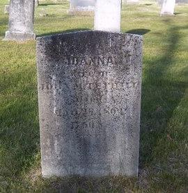 TUTHILL, JOANNA - Suffolk County, New York | JOANNA TUTHILL - New York Gravestone Photos