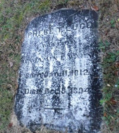LUCE WARNER, PHEBE T - Suffolk County, New York | PHEBE T LUCE WARNER - New York Gravestone Photos
