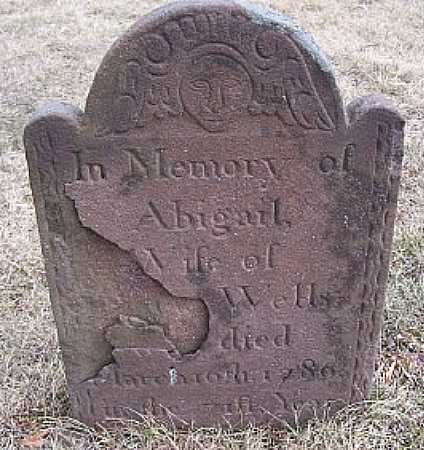 WELLS, ABIGAIL - Suffolk County, New York | ABIGAIL WELLS - New York Gravestone Photos