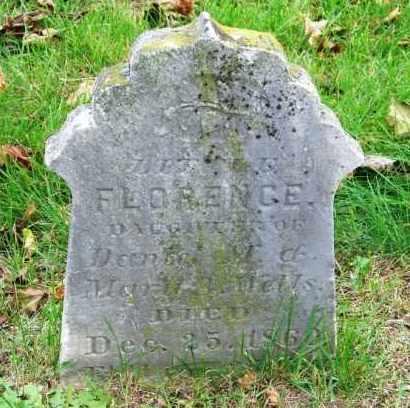 WELLS, FLORENCE - Suffolk County, New York | FLORENCE WELLS - New York Gravestone Photos