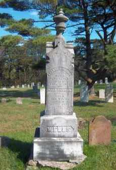 WELLS, MARY THERESA - Suffolk County, New York | MARY THERESA WELLS - New York Gravestone Photos
