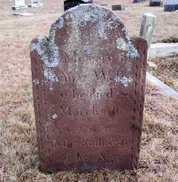 WELLS, HENRY - Suffolk County, New York | HENRY WELLS - New York Gravestone Photos