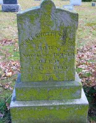 WELLS, H. ELLSWORTH - Suffolk County, New York | H. ELLSWORTH WELLS - New York Gravestone Photos