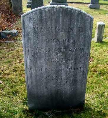 WELLS, MORGAN D - Suffolk County, New York | MORGAN D WELLS - New York Gravestone Photos