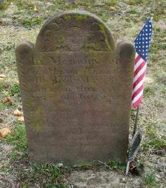 WELLS, MANLY - Suffolk County, New York | MANLY WELLS - New York Gravestone Photos
