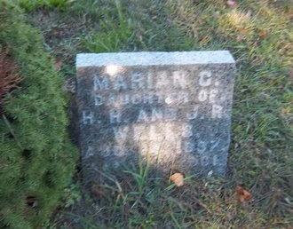 WELLS, MARIAN C - Suffolk County, New York | MARIAN C WELLS - New York Gravestone Photos
