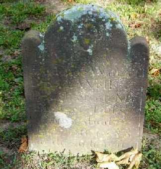 WELLS, PRUDENCE - Suffolk County, New York | PRUDENCE WELLS - New York Gravestone Photos