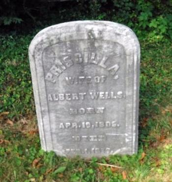WELLS, PRISCILLA - Suffolk County, New York | PRISCILLA WELLS - New York Gravestone Photos
