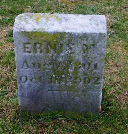 WILBUR, ERNIE M. - Suffolk County, New York | ERNIE M. WILBUR - New York Gravestone Photos