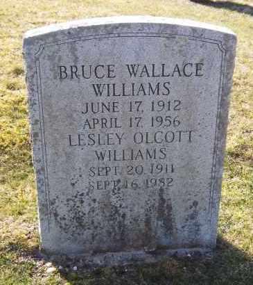 WILLIAMS, LESLEY - Suffolk County, New York | LESLEY WILLIAMS - New York Gravestone Photos