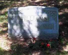 WILLIAMS, COLES C. - Suffolk County, New York | COLES C. WILLIAMS - New York Gravestone Photos