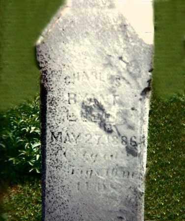 RYANT, CHARLES - Tioga County, New York | CHARLES RYANT - New York Gravestone Photos