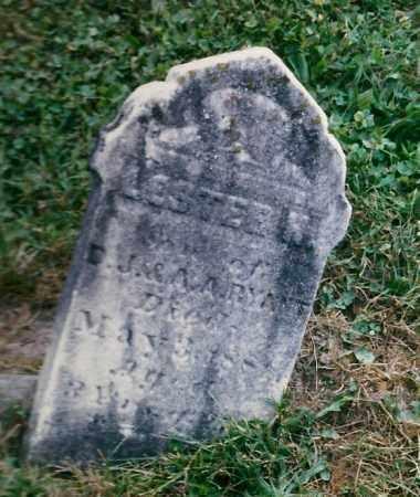 RYANT, LESTER H. - Tioga County, New York | LESTER H. RYANT - New York Gravestone Photos