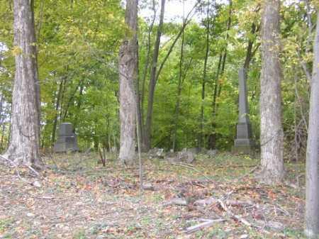 BROWN, ABRAHAM - Tompkins County, New York | ABRAHAM BROWN - New York Gravestone Photos