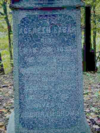 BROWN, ACENETH SEANA - Tompkins County, New York | ACENETH SEANA BROWN - New York Gravestone Photos