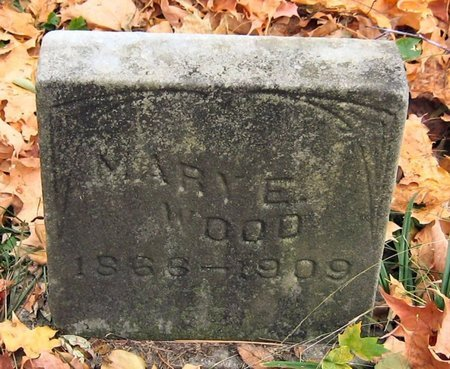 WOOD, MARY E. - Tompkins County, New York | MARY E. WOOD - New York Gravestone Photos