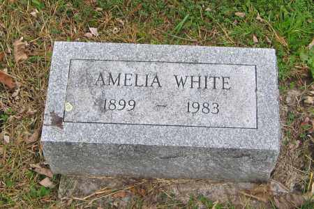 WHITE, AMELIA - Ulster County, New York | AMELIA WHITE - New York Gravestone Photos