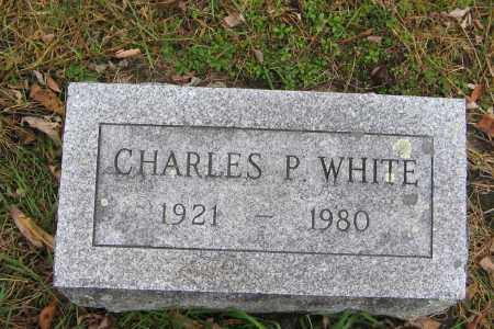 WHITE, CHARLES P. - Ulster County, New York | CHARLES P. WHITE - New York Gravestone Photos
