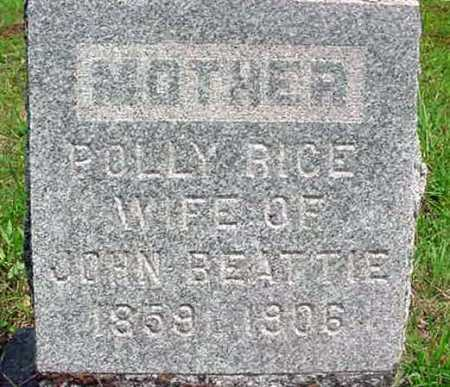 RICE, POLLY EMILIE - Warren County, New York | POLLY EMILIE RICE - New York Gravestone Photos