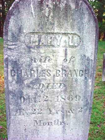 BRANCH, MARY L - Warren County, New York   MARY L BRANCH - New York Gravestone Photos