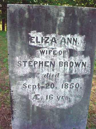 BROWN, ELIZA ANN - Warren County, New York | ELIZA ANN BROWN - New York Gravestone Photos