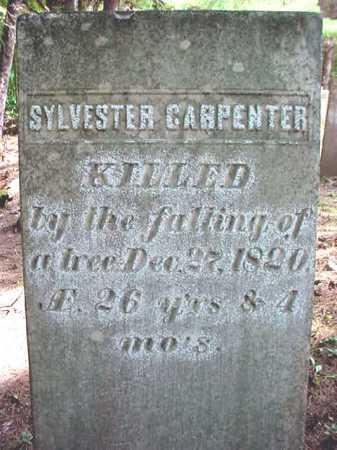 CARPENTER, SYLVESTER - Warren County, New York | SYLVESTER CARPENTER - New York Gravestone Photos
