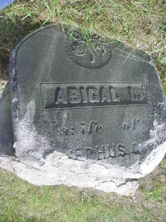 BAKER, ABIGAL L - Warren County, New York   ABIGAL L BAKER - New York Gravestone Photos