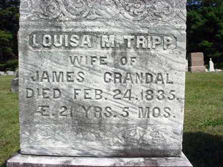 TRIPP CRANDAL, LOUISA M - Warren County, New York | LOUISA M TRIPP CRANDAL - New York Gravestone Photos