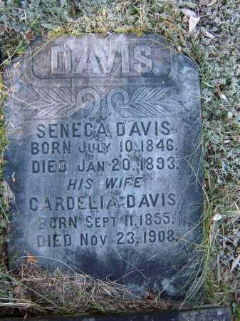 DAVIS, CARDELIA - Warren County, New York | CARDELIA DAVIS - New York Gravestone Photos